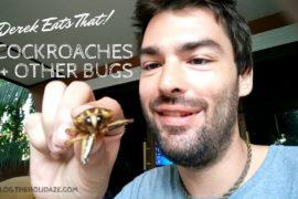 Eating Cockroach in Pattaya mmmm ― Derek Eats...